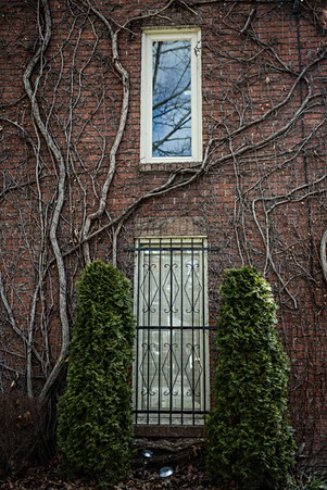 Toronto, Ontario. Canada, ON, Downtown, wall, trees, green, windows..jpg