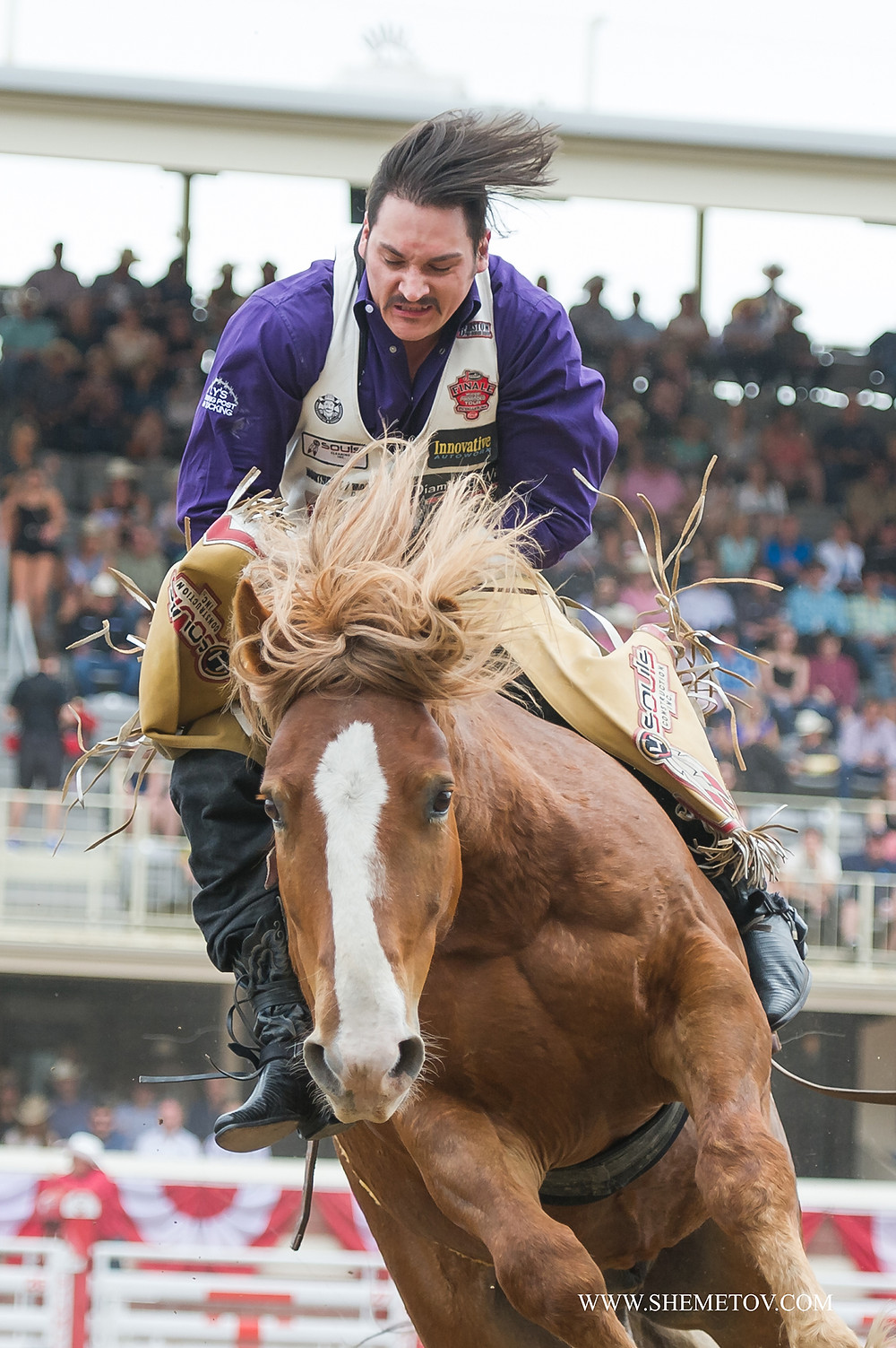 the pictiure is taken during the rodeo event at the Calgary Stampede 2019
