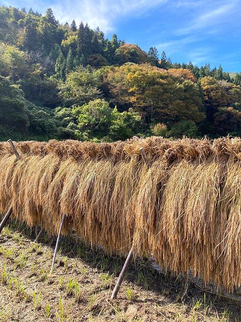 はざ掛け天日干し【7分付き米3kg】〜2020年穂高養生園産〜(農薬不使用)
