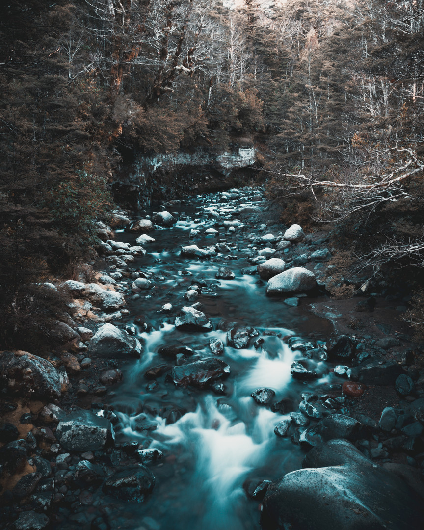 riverlongexpo.jpg