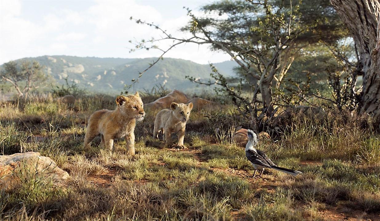 le-roi-lion-live-270jpg