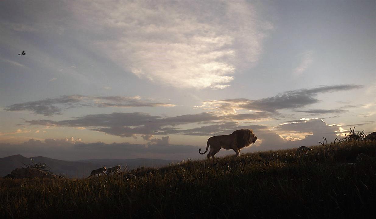 le-roi-lion-live-210jpg