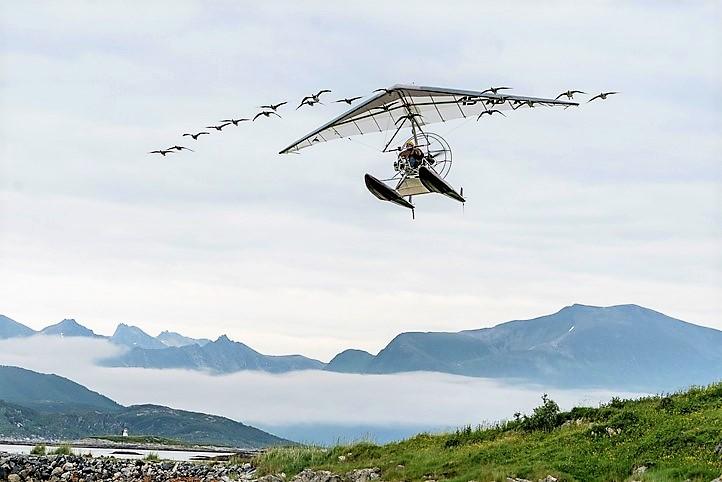 donne-moi-des-ailes-210jpg