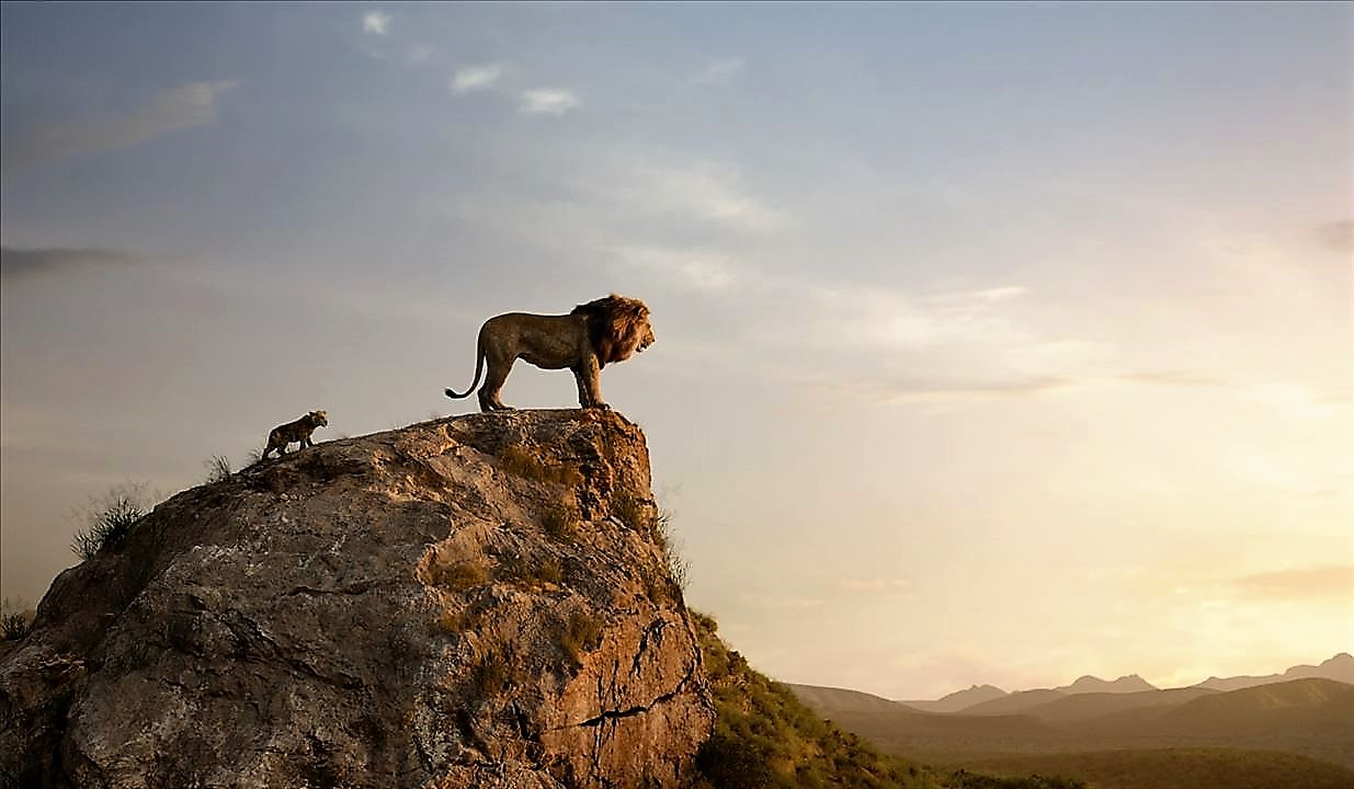 le-roi-lion-live-120jpg