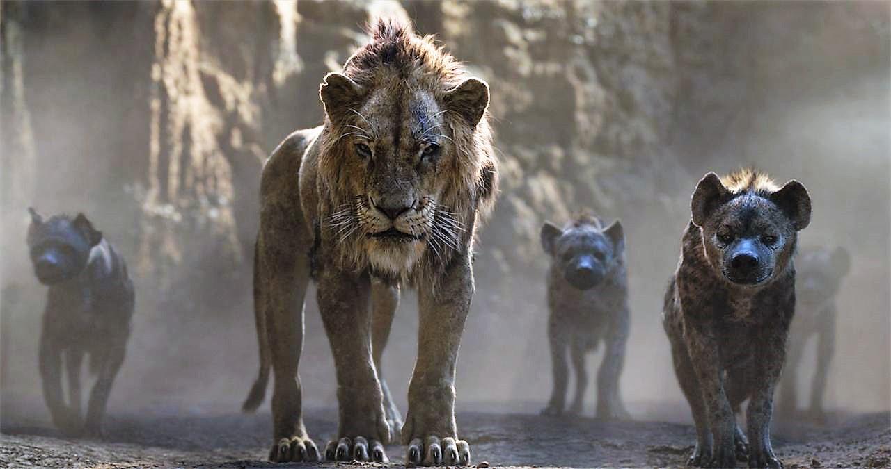 le-roi-lion-live-260jpg