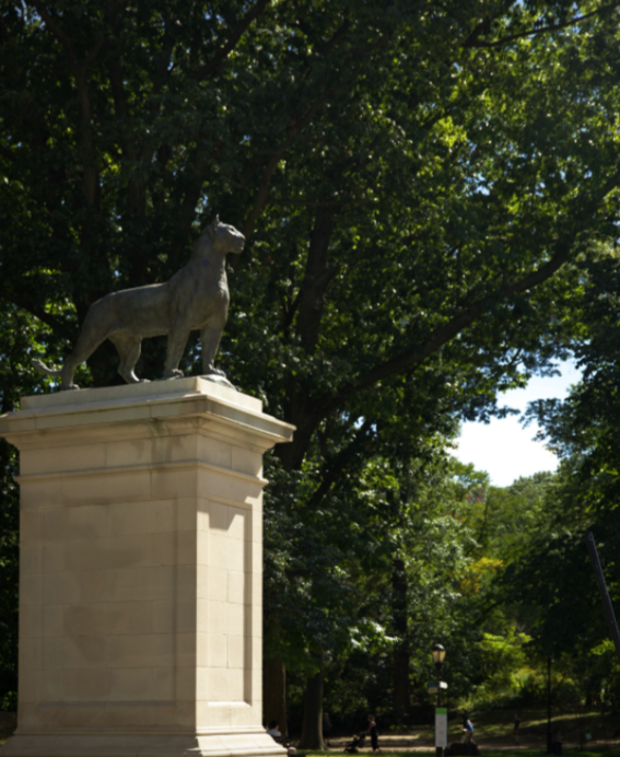 The panther statue with green trees in the background. Located in Prospect Park, Brooklyn.