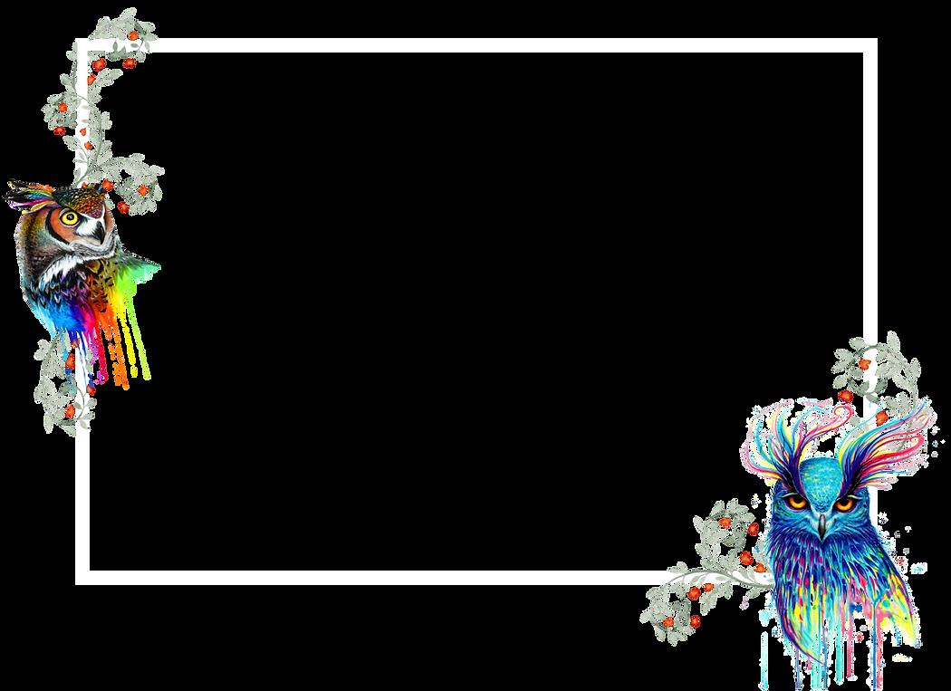 Web border_Colour.png
