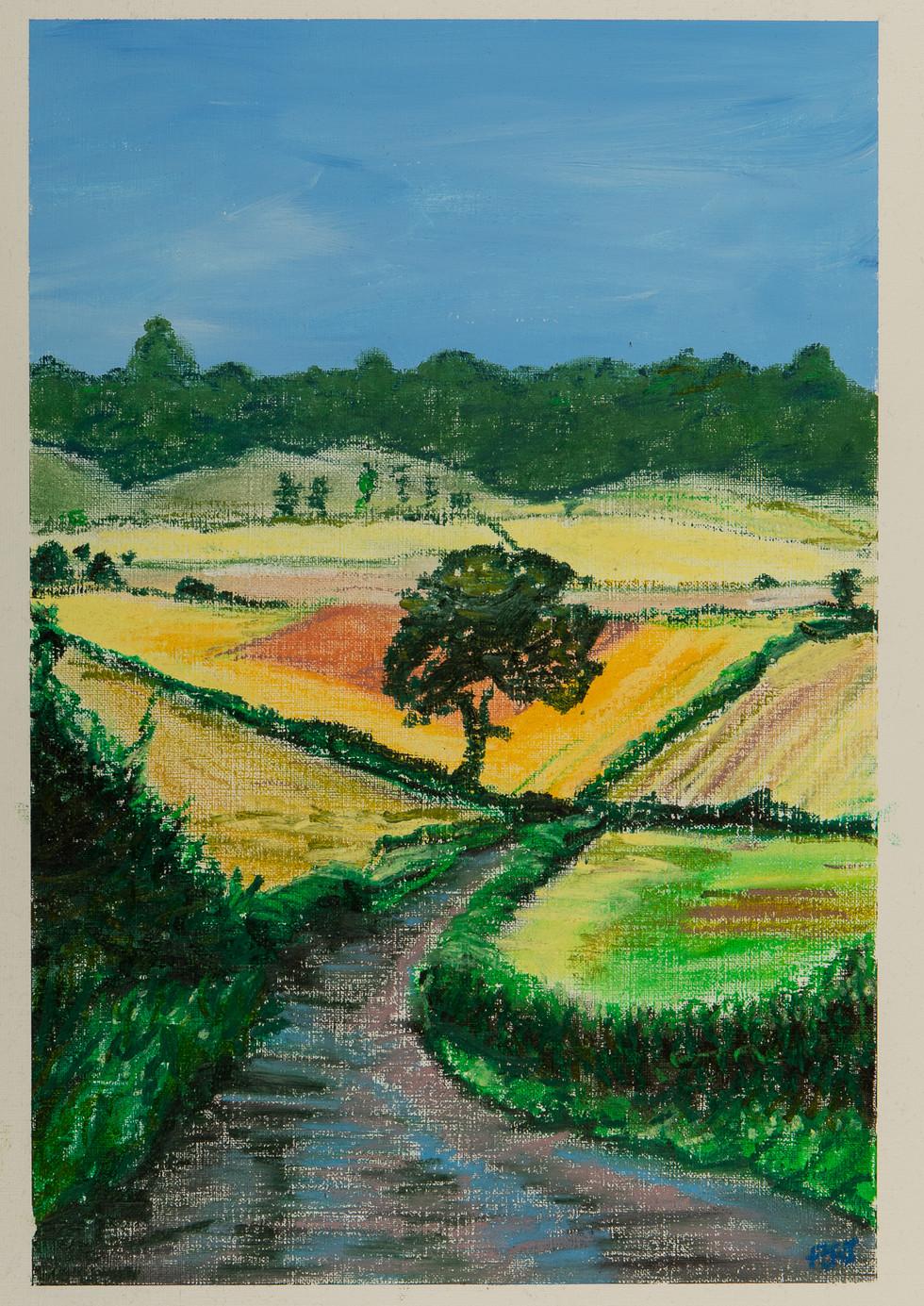 View to Stantonbury Wood
