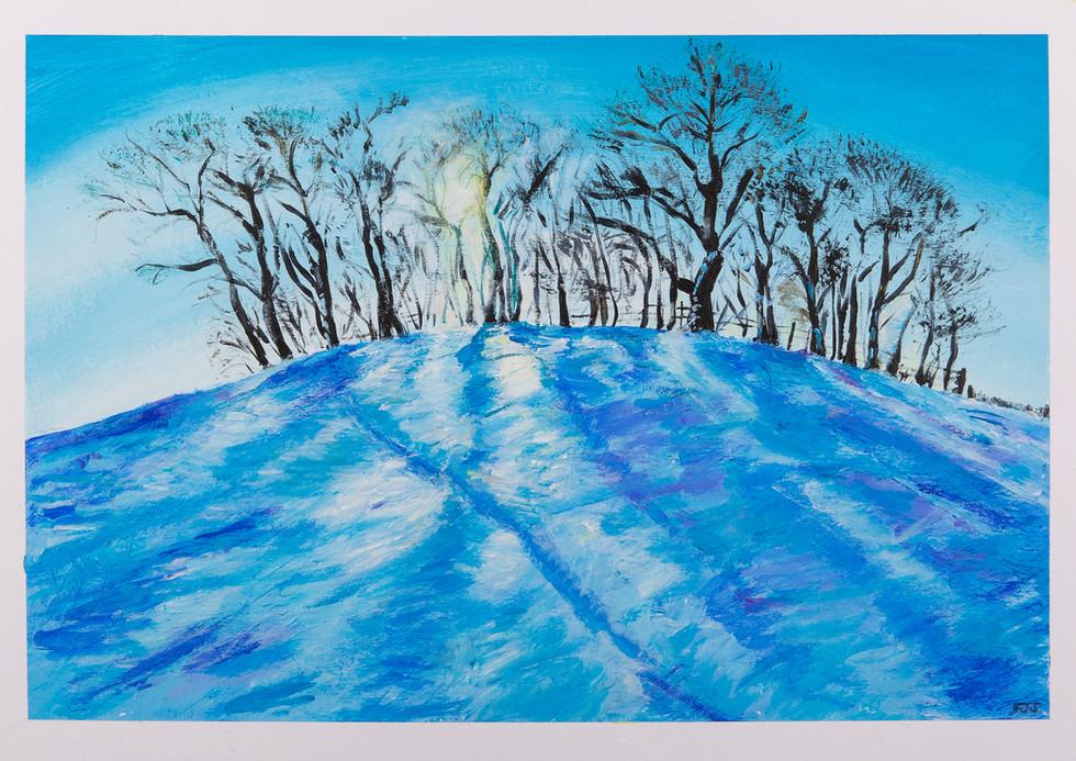 Kelston Snow
