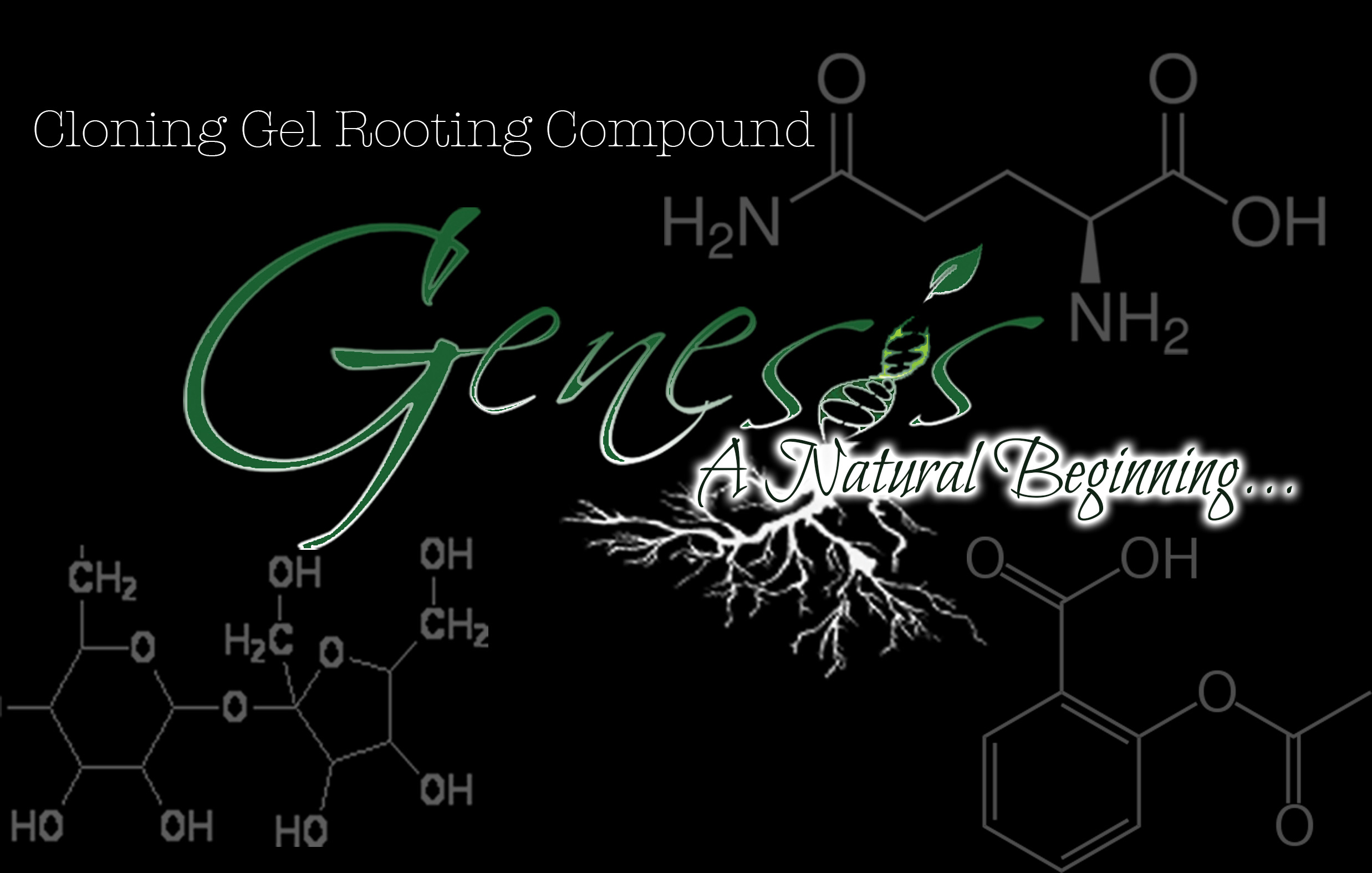 Genesis sticker black molecule