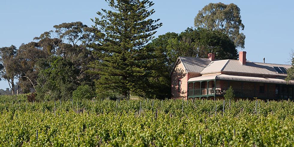 Mitchell Wine