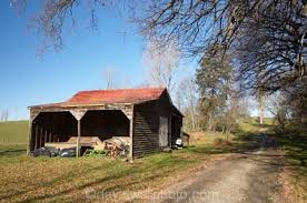 shed5.jpeg