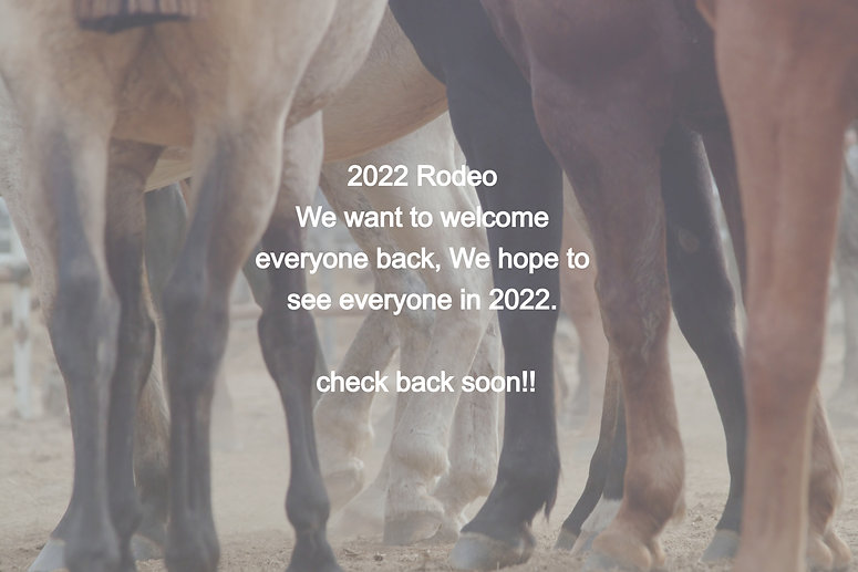 Horse%20Legs_edited.jpg
