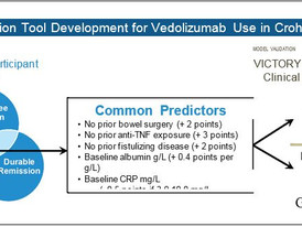 Development and Validation of a Scoring System to Predict Outcomes of Vedolizumab Treatment in Patie