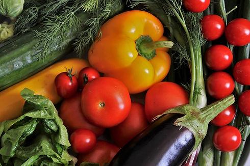 coast property management giving back food waste