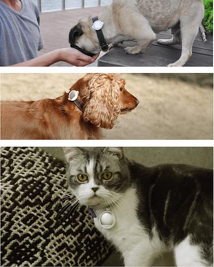 PETKIT FIT P2 ペットキット 犬 猫 モニター 健康