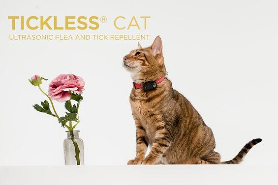 TICKLESS Cat4.jpg