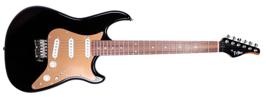 Eagle Classic Black, gold pickguard-1_cl