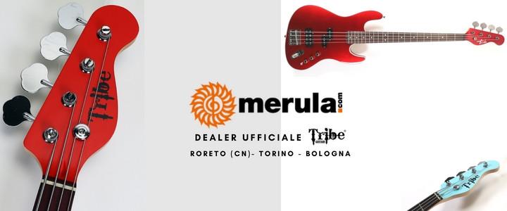 Merula: il nuovo partner per il Piemonte