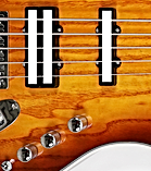 Neck pickup + Dualcoil.png