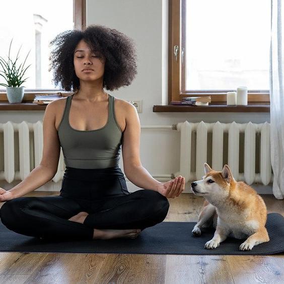 Monday Teen Yoga Course