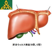 肝炎検査.jpg
