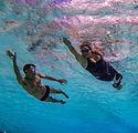 swim-Jason Rose.jpg