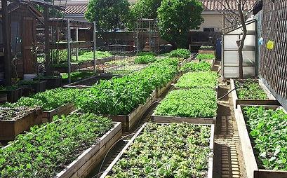 ferme urbaine permaculture