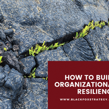 How to Build Organizational Resilience