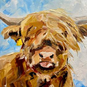 highlands cow.JPEG