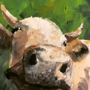Smiley cow