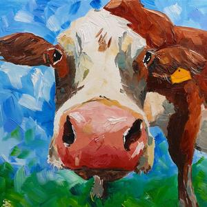 Irish Moiled Cow