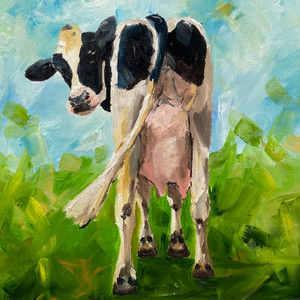 cow in the field.JPEG