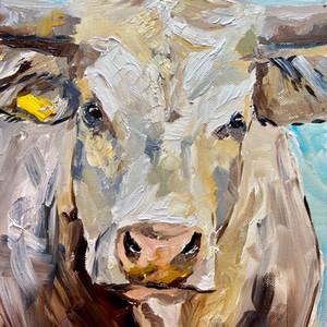 white cow.JPEG