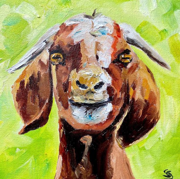 little goat painting