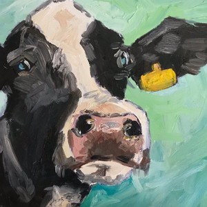 Friesian cattle