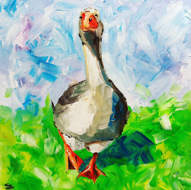 Nosey goose