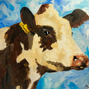 A good looking cow