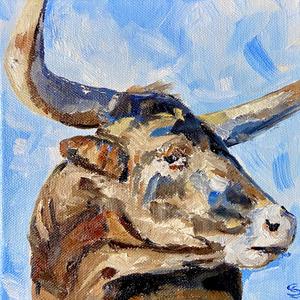 bull.HEIC