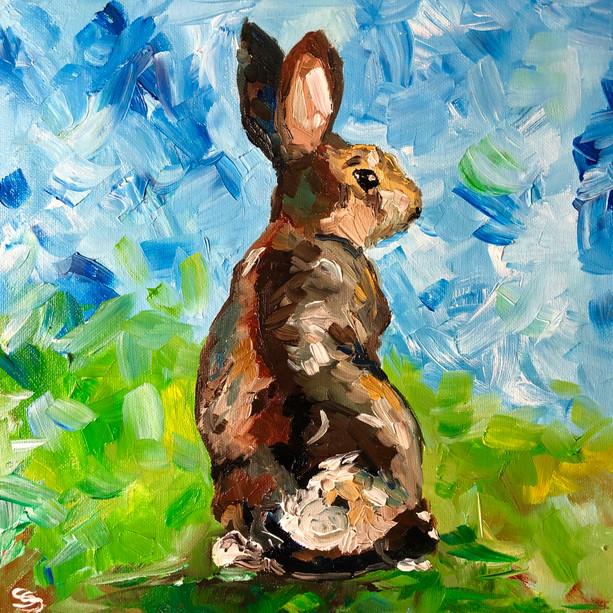A funny rabbit