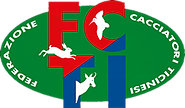 LOGO-FCTI.png