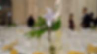 Capture d'écran 2020-06-08 à 14.42.46.
