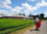 20190803_ayawater_main.jpg