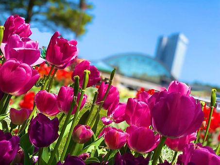 flower_06.jpg