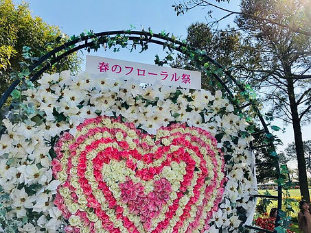 flower_16.jpg