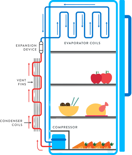 Fridge_circuit_Diagram-1-removebg-previe