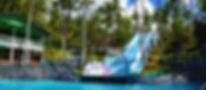 Slip&Fly1.jpg
