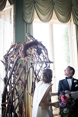 Owls at your wedding at Powderham!