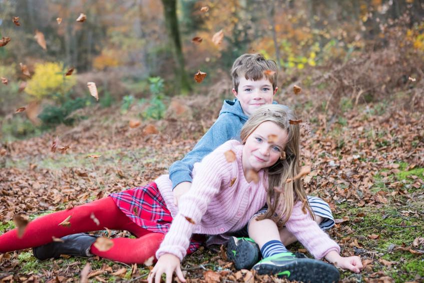 Haldon Forest leaves