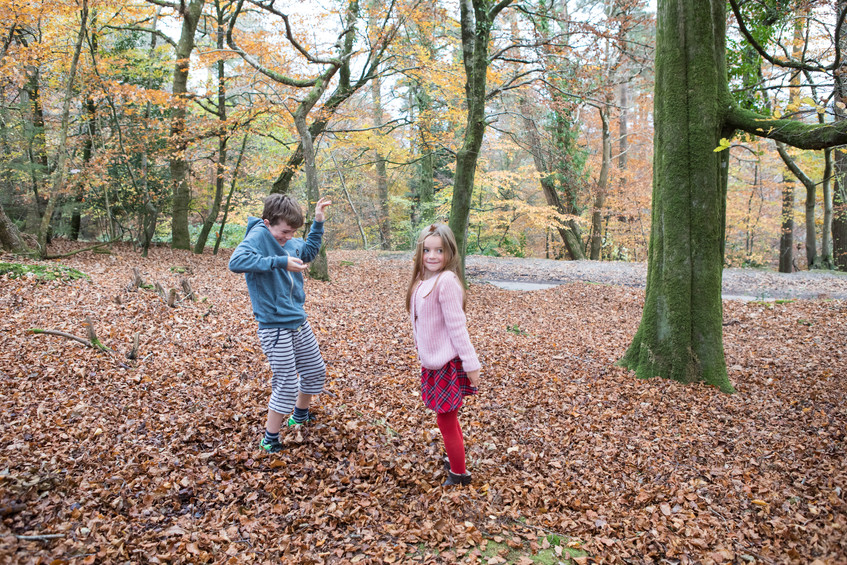 Haldon autumn fun